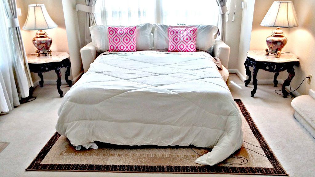 Queen Sofa Bed in Living Room| San Francisco Bay Area Vacation Home Rentals